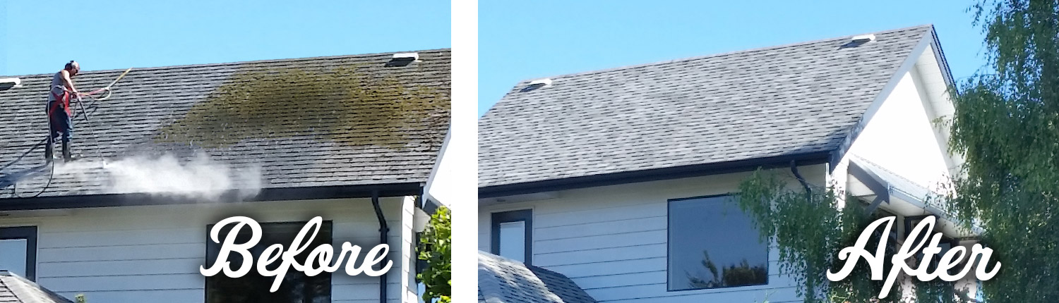 example of pressure washing a roof